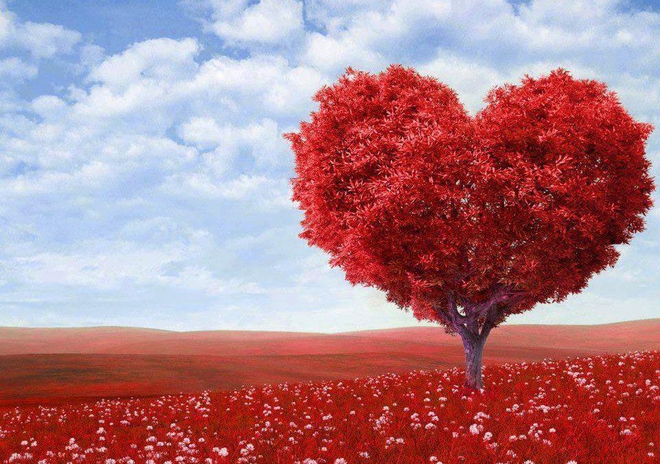 Si può misurare l'amore?